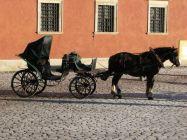 Horse-drawn carriage, Poland