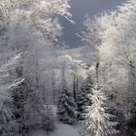 Beskid Mountains - Poland