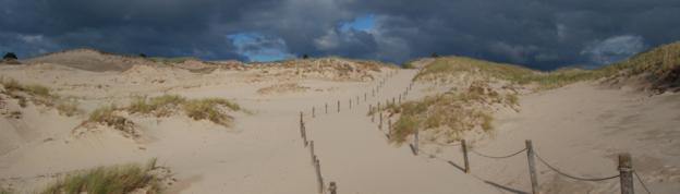 Sand dunes at the Baltic Sea