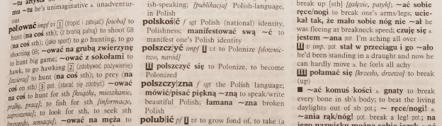 polish-english dictionary - polish language